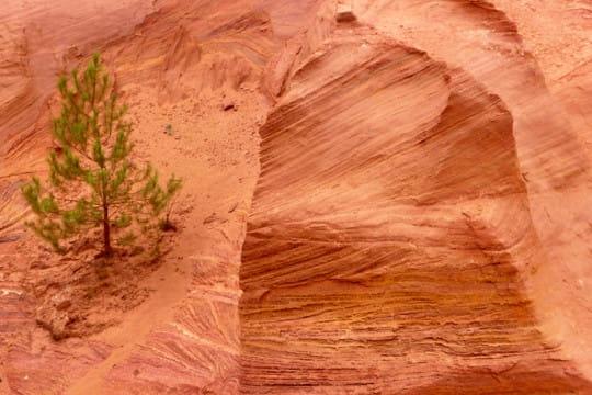 L gende d 39 ocre - Terre de sienne couleur ...