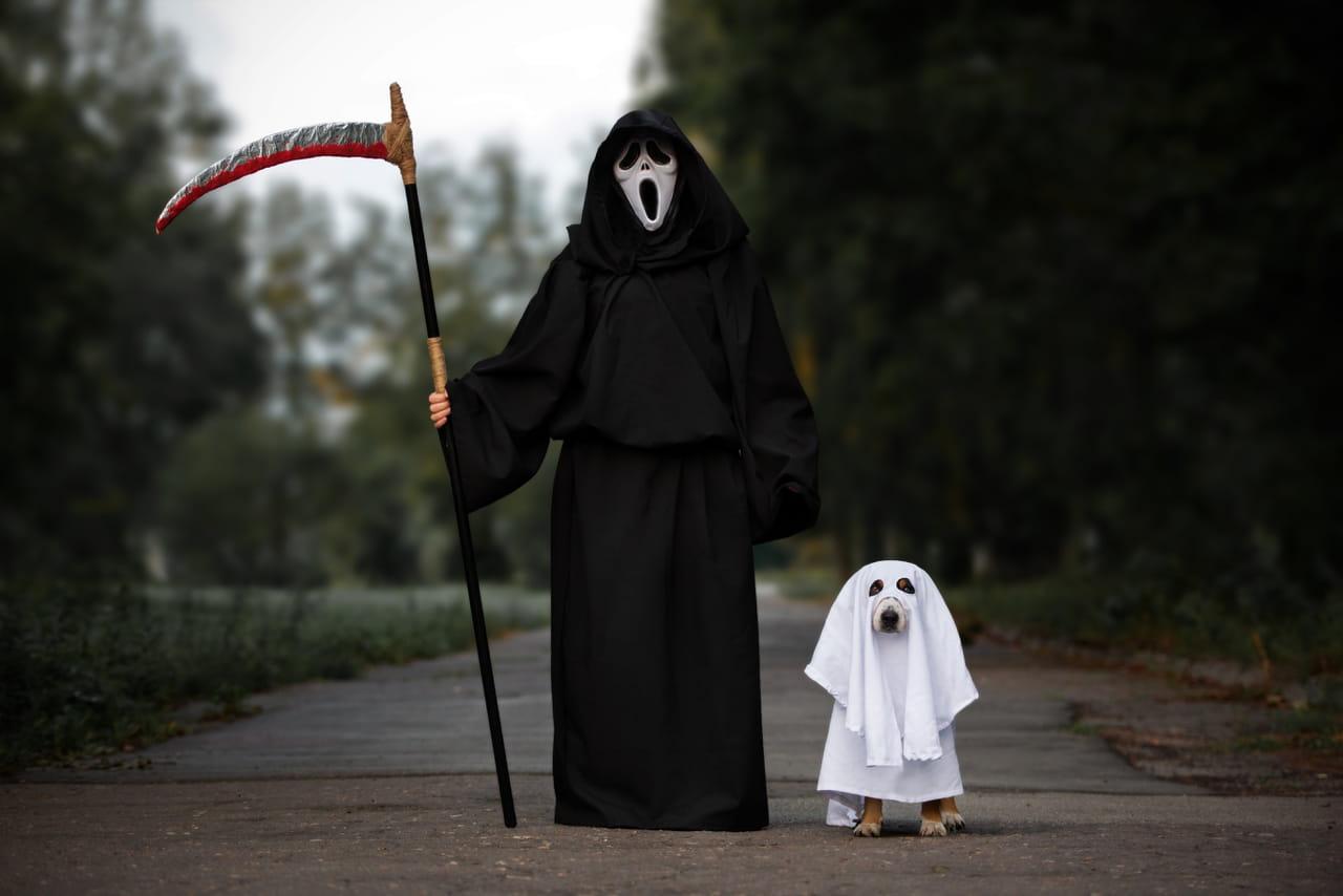 Halloween2019: sorties, costumes et origine de cette fête de monstres
