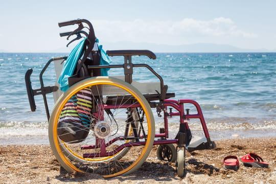 Voyager avec un handicap: en train ou en avion... Organisation et conseils