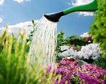 entretiens avec un jardinier
