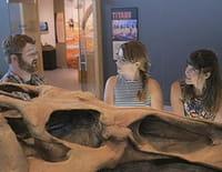Sur les routes de la science : Sur les traces des dinosaures (Alberta)