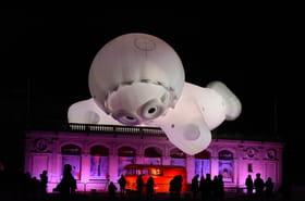 Les plus belles images de la Fête des lumières de Lyon