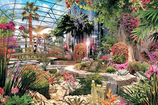 Fleurs tropicales et jardins int rieurs for Jardins interieur