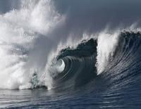 Au coeur des abysses : Océan en colère