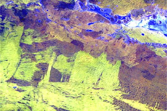Lac de virtuose