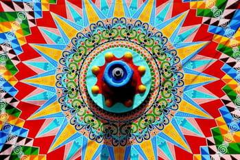 Vos plus belles photos aux couleurs vives