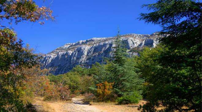 Sainte-Baume: que voir, randonnée, grotte, météo, le guide