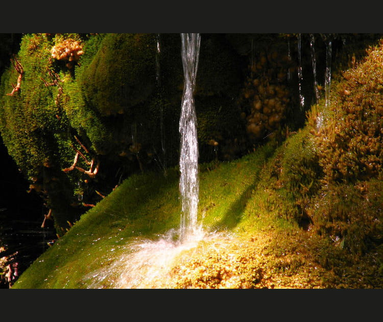 Les fontaines pétrifiantes de La Sône