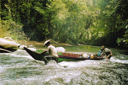 Expédition à Bornéo