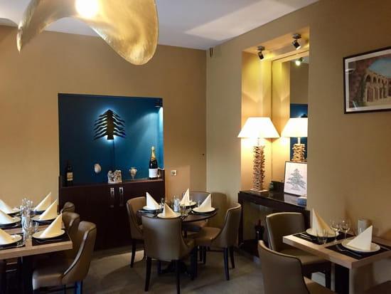 Restaurant : Le Cèdre  - restaurant libanais a Nice   Le CEDRE -   © le cedre