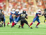 Football américain : NFL - NFL