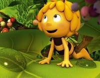 Maya l'abeille 3D : Deuxième classe
