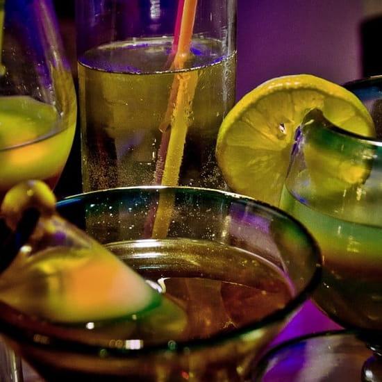 Jungle, Club Gourmet Exotique