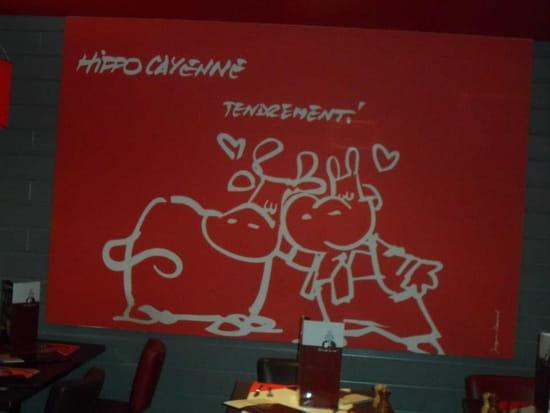 Hippopotamus  - HIPPOPOTAMUS PALMISTES -