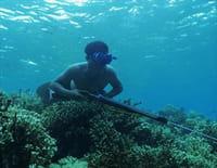 A la rencontre des peuples des mers : Philippines, les Tagbanwa