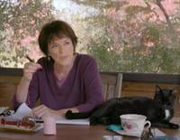 Les écrivains, le silence et les chats