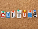 La chronique culture