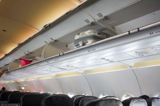 Un chien meurt dans le compartiment à bagages d'un avion United Airlines
