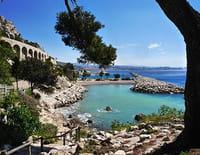 Thalassa : Marseille, plus belle la mer