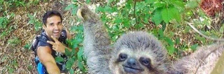 Ce selfie avec un paresseux est devenu l'autoportrait le plus cool au monde