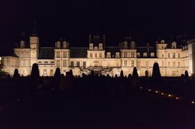 Nuit des Musées: date, programme, à Paris, à Lyon, à Bordeaux...