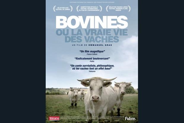 Bovines ou la vraie vie des vaches - Photo 1