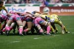 Rugby - Stade Français (Fra) / Worcester Warriors (Gbr)