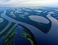 Indonésie sauvage : Amazonie, berceau de la vie