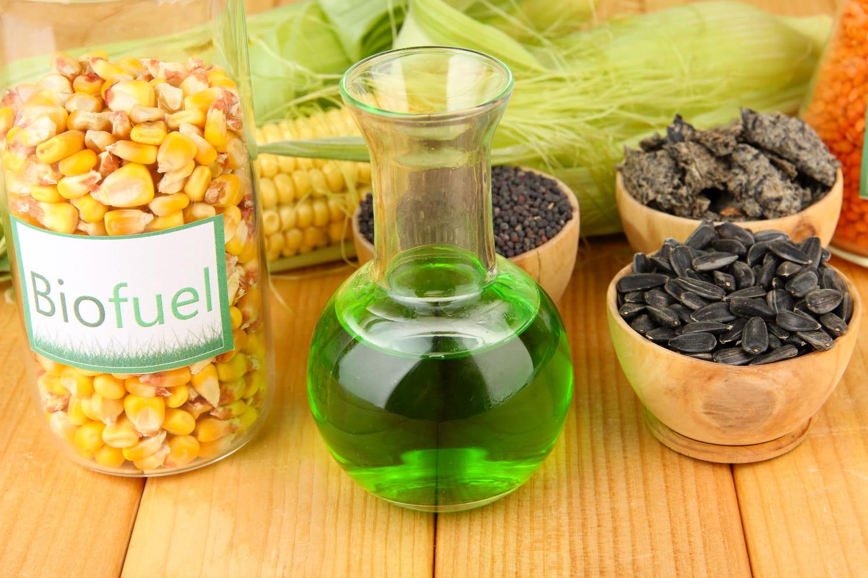 Les biocarburants: comment ça marche, quel prix?