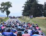 Cyclisme : Tour de Pologne - Tour de Pologne