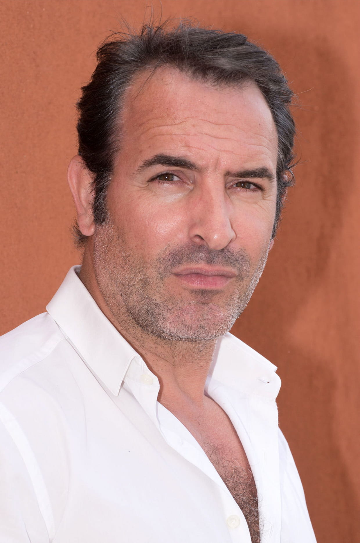 Jean dujardin for Dujardin services