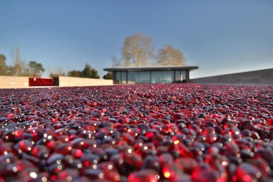 La Terrasse Rouge