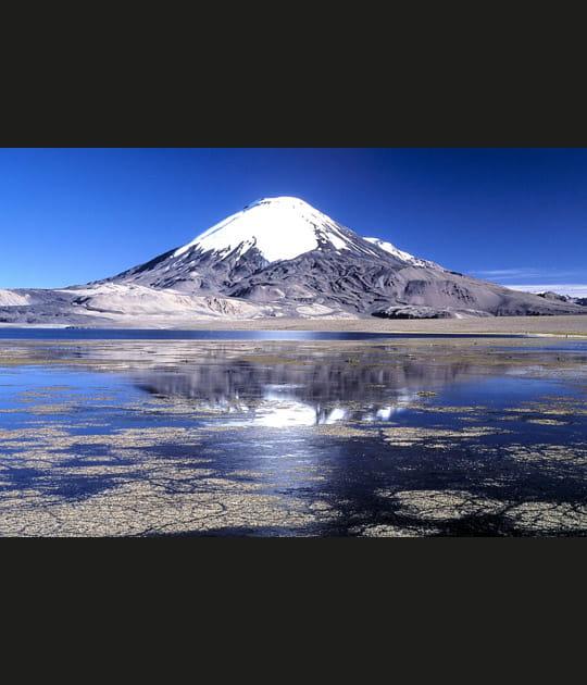 Le volcan Sajama