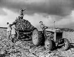 A l'ombre de la Seconde Guerre mondiale