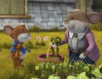 Tip la souris : Teddy a disparu