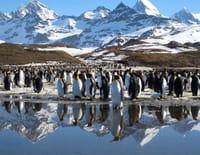 Terres de glace : Le répit de l'été