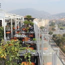 La Terrasse du Plaza  - Restaurant La Terrasse du Plaza Vieux-Nice -
