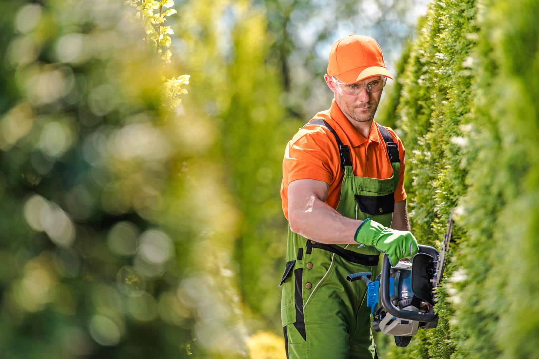 Dans quelle case déclarer la facture du jardinier?