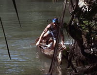 American Tarzan : Glissement de terrain