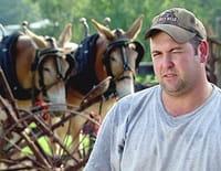 Les bûcherons de l'extrême : Des mules en renfort