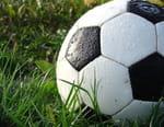 Football : Ligue des champions - Dortmund / Sporting