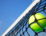 Tennis : ATP Open 13 de Marseille