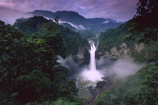 Belles photos de forêt