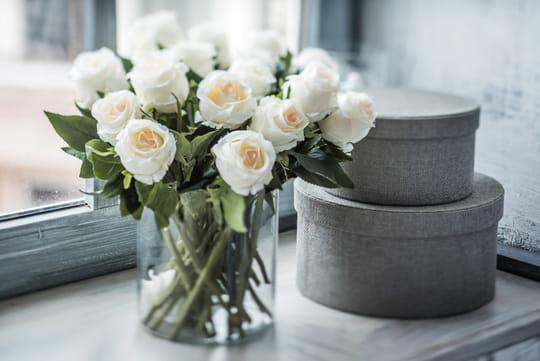 Vase: comment bien le choisir, les meilleurs modèles