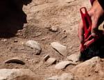 Les secrets des momies égyptiennes