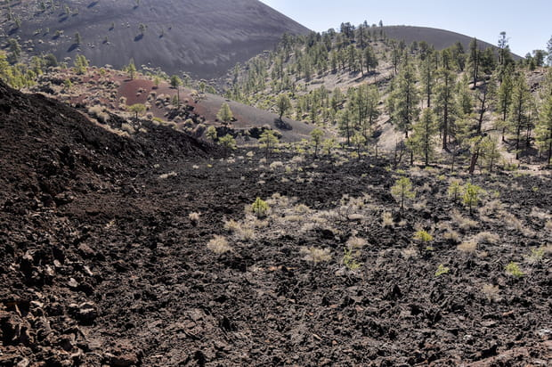 Le monument national du Sunset Crater Volcano, des paysages lunaires