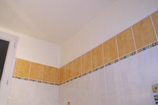 peindre les murs et le plafond. Black Bedroom Furniture Sets. Home Design Ideas