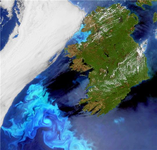 Nuées planctoniques en approche