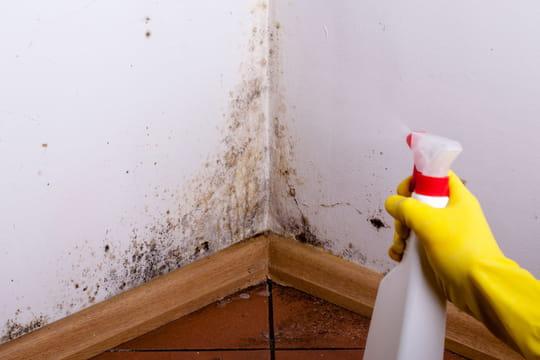 Traiter l'humidité: nos solutions pour vos murs
