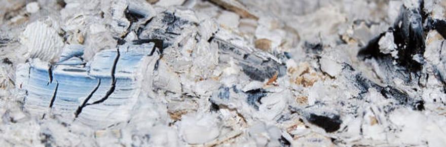 Cendre et charbon de bois: astuces pour entretenir maison et jardin